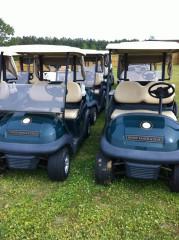 fleet business golf carts for sale
